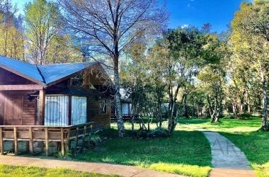 Palguin, Araucanía, 12 Habitaciones Habitaciones,7 BathroomsBathrooms,Propiedad Comercial,Venta,1247