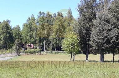 4, Segunda Faja, Araucanía, ,Parcela,Venta,1020
