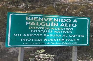 586 Palguin, Palguin, Araucanía, ,Sitios,Venta,Palguin ,1316